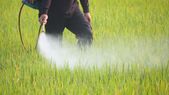 Field Spraying